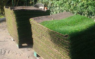 Romain tuin- en klinkerwerken - Graszoden